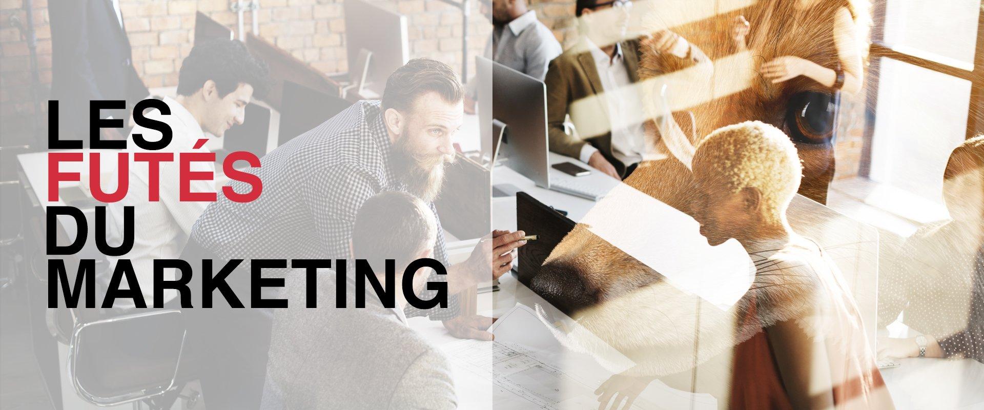 Futé Marketing agence stratégie marketing web